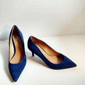 Banana Republic Blue Seude Pointed Toe Heels